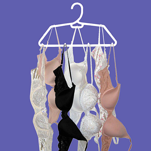 Hook n Dry Bra Hanger (Set of 2) Image