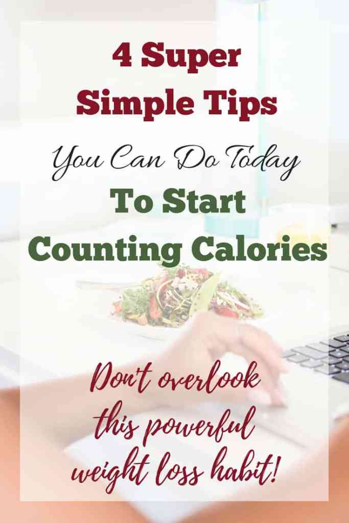 How to Count Calories: 4 Simple Tips To Get Started ...