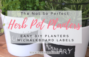 DIY Herb Pot Planters
