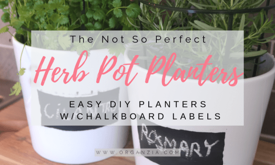 DIY Herb Pot Planters