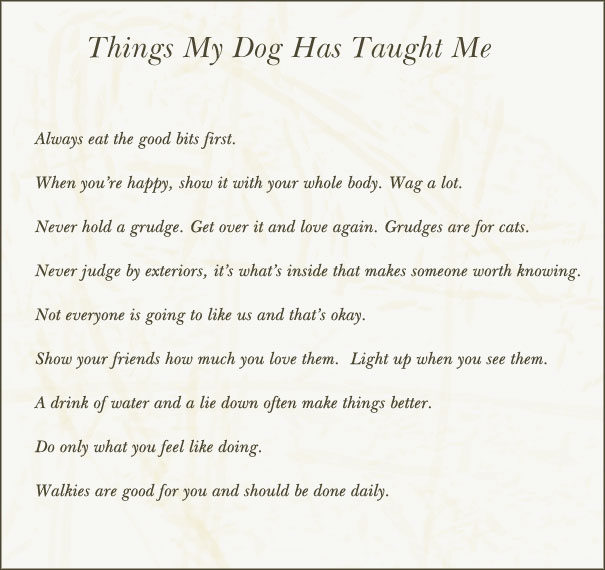 Things My Dog Taught Me