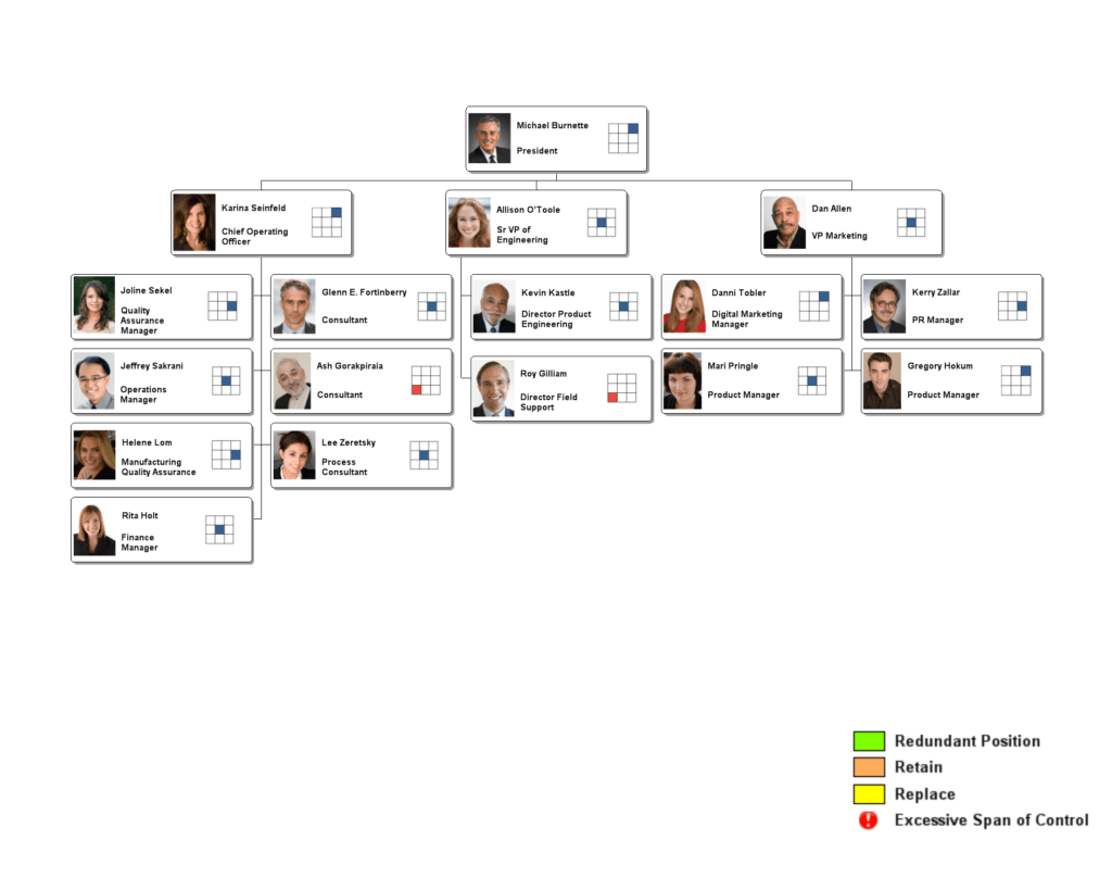 Org Chart Examples From Orgchartpro