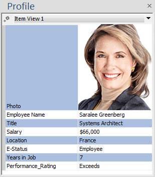 New Personnel Profile Views with Conditional Formatting