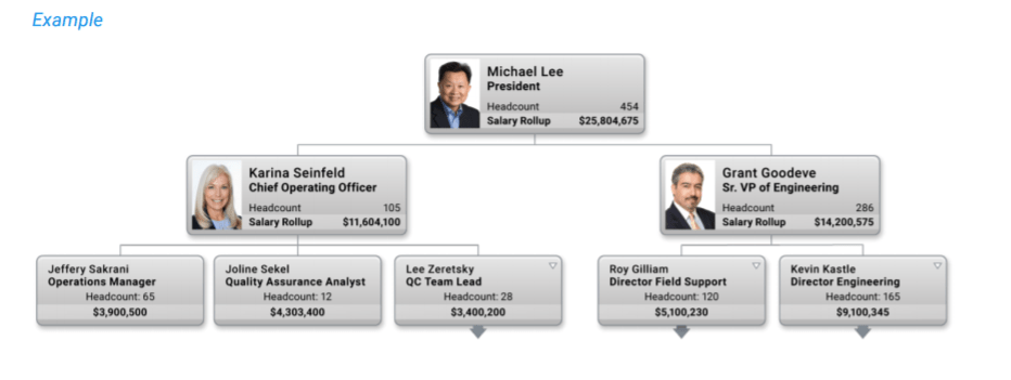 Salary Benchmarking - Managing Compensation with OrgChart