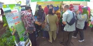 Isotonik Akway Polbangtan Manokwari Diserbu Warga di Gebyar Perbenihan Tanaman Pangan