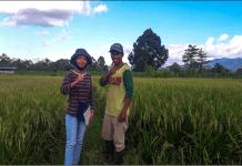 mahasiswi PKL II dan Pendampingan Kostratani Politeknik Pembangunan Pertanian (Polbangtan) Manokwari, Krisye Arvilla Parrangan pose bersama Imam Mahmud, salah satu petani di Kampung Aimasi Sp3, Distrik Prafi, Manokwari.