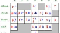 Son alteraciones en la articulación de los fonemas, bien por ausencia, alteración o por sustitución de algunos sonidos concretos del habla. Se trata de una incapacidad para pronunciar o formar […]