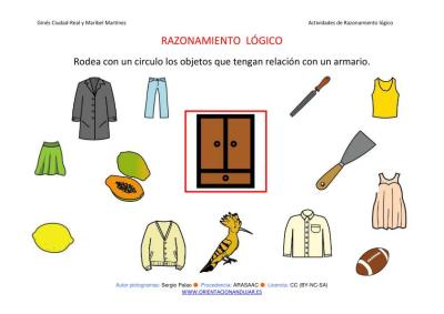 RAZONAMIENTO  LÓGICO categorizar y agrupar ARMARIO COLOR IMAGEN