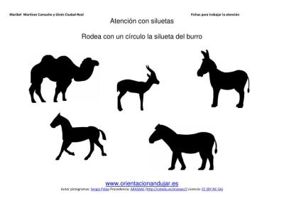 siluetas animales domesticos burro