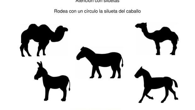 siluetas animales domesticos caballo