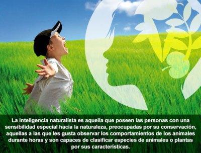 inteligencia_naturalista