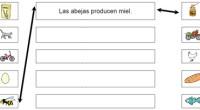 Orientación Andújar en wikisaber Os dejo una recopilación de todas las fichas que he preparado para el portal con el que colaboro. Wikisaber Haz clic sobre las imagenes para descargar […]