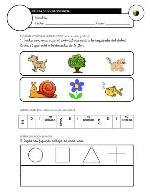 Evaluación Inicial Lengua 1º IMAGEN