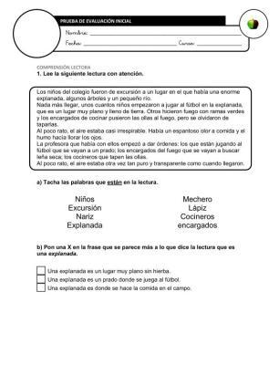 Evaluación Inicial Lengua 4º IMAGEN