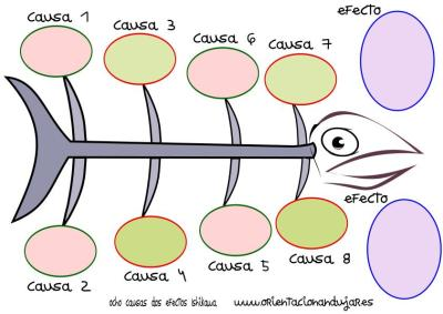 organizador grafico ocho causas dos efectos Ishikawa espina de pescado círculos COLOR IMAGEN