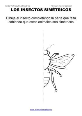 los insectos simetricos trabajamos  lateralidad  izq-dcha ORIENTACION ANDUJAR05 (15)
