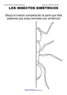 los insectos simetricos trabajamos  lateralidad  izq-dcha ORIENTACION ANDUJAR05 (16)