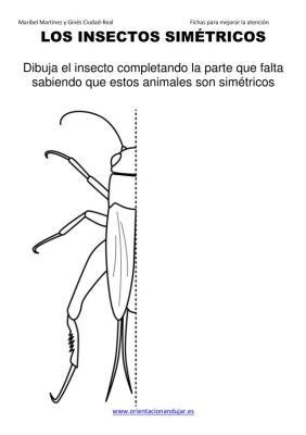 los insectos simetricos trabajamos  lateralidad  izq-dcha ORIENTACION ANDUJAR05 (2)