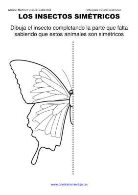 los insectos simetricos trabajamos  lateralidad  izq-dcha ORIENTACION ANDUJAR05 (3)