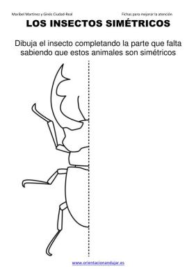 los insectos simetricos trabajamos  lateralidad  izq-dcha ORIENTACION ANDUJAR05 (4)