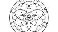 OS dejamos estas estupendas mandalas que están realizadas exclusivamente con formas geométricas. Para esta primera entrega hemos realizado unas mandalas geométricas con círculos Son conocidas desde hace años ventajas de […]