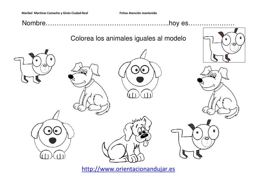 Trabajamos la atención Colorea el animal igual al modelo nivel inicial