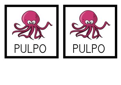 MEMORY PULPO