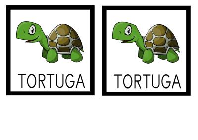 MEMORY TORTUGA