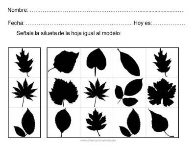 cuderno habilidades basicas 2 imagenes (4)