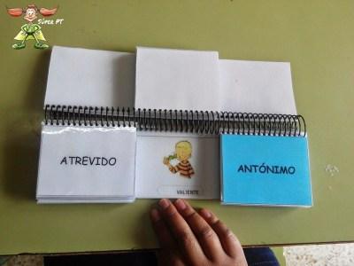 Libro Móvil de los Sinónimos y Antónimos 5