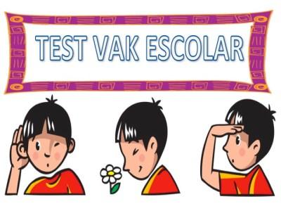 Test de estilos de aprendizaje de Vak ESCOLAR. Infantil, primaria y secundaria.