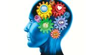 En el momento actual, el enfoque de las inteligencias múltiples de Gardner es el paradigma más utilizado para estudiar la inteligencia humana. Este enfoque nos permite determinar el perfil de […]