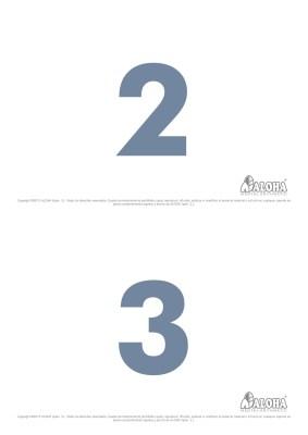 ALOHA_Infografia_S11_Flashcards-(2)-004