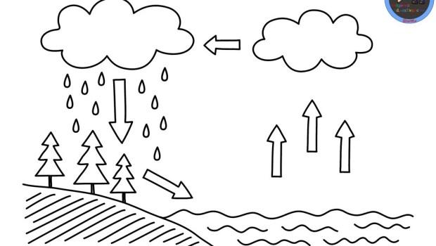 Dibujos Para Colorear Del Ciclo Del Agua Para Ninos: Ciclos-del-agua-para-colorear-1-1