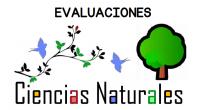 Os dejamos este conjunto de evaluaciones que son ideales para realizar tanto a final como a principio de curso para evaluar a nuestros alumnos en ciencias naturales.
