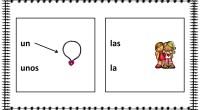 La siguiente actividad presenta un sencillo ejercicio que consiste en unir cada dibujo de las fichas con el artículo que corresponda según el género y el número.