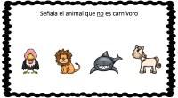 Hoy os traemos unas divertidas fichas para conocer a los animales y sus características principales, a través de dibujos. En la siguiente actividad nuestros alumnos deben identificar y señalar al […]