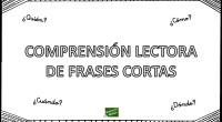 DESCARGA EL ARCHIVO EN PDF Tarjetitas de comprension lectora frases cortas