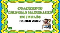 El siguiente material está pensado para alumnos que dan la asignatura de ciencia naturales en inglés o bien que prefieran repasar inglés a través del vocabulario y la temática propia […]