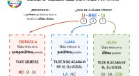 Recordemos que las palabrasagudas son aquellas cuya última sílaba es tónica (es decir, se pronuncia con mayor intensidad), lasllanastienen la penúltima sílaba tónica y lasesdrújulasla antepenúltima, las pocas que en […]