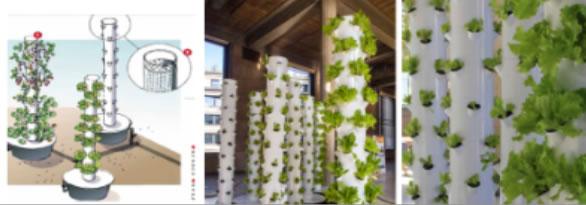 Tour v g tale versailles for Jardin cultural uabc 2015