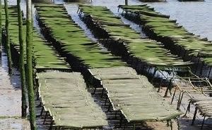 bts aquaculture formation aquaculteur