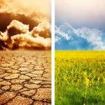 BTSA DARC : Développement de l'agriculture des régions chaudes