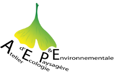 bureau d'études paysagères AEPE-Gingko