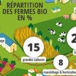 L'agriculture biologique créatrice d'emplois