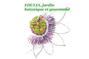 jardin botanique edulia - biodiversité
