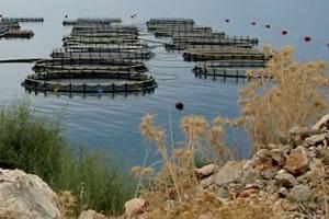 master Bioressources aquatiques