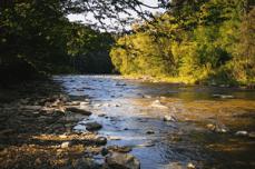 stage protection des milieux aquatiques