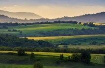 métiers agricoles et forestiers