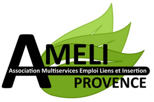 AMELI Provence emploi insertion